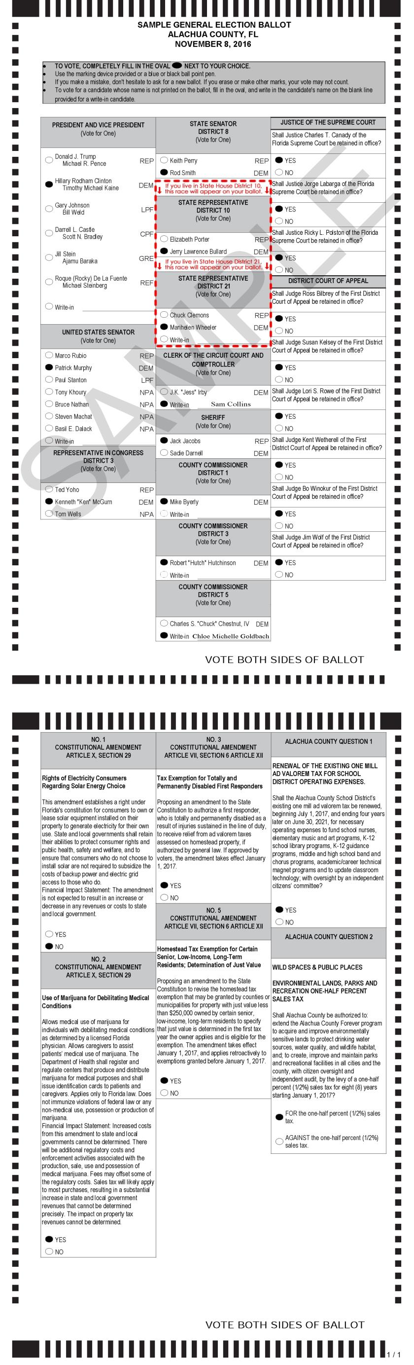 november-ballot